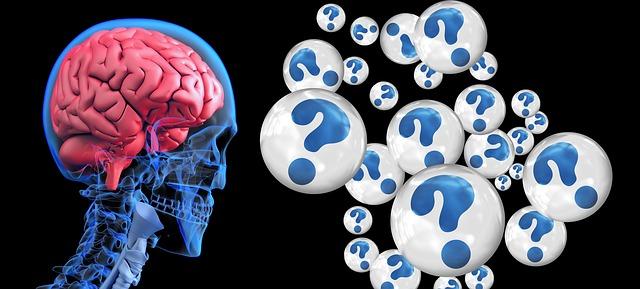 brain what looking in blog
