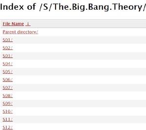the big bang theory all season